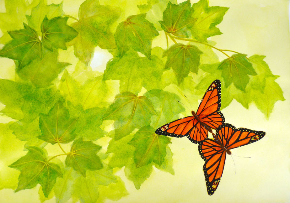 Monarch butterflies mating Ascending - Pages 22-23