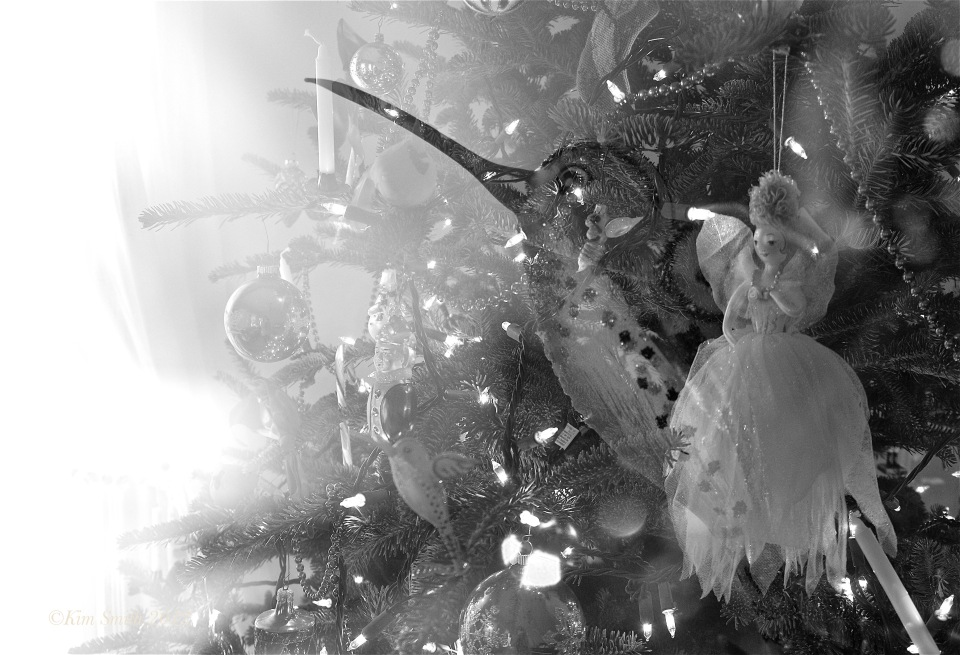 Christmas Fujifilm X-E1 Multiple Exposure -5 ©Kim Smith 2012