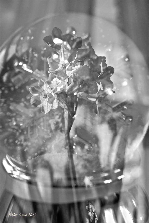 Christmas Fujifilm X-E1 Multiple Exposure ©Kim Smith 2012 copy