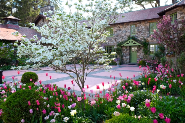 Willowdale estate spring-tulips-©kim-smith-2013