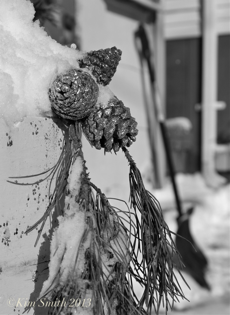 Pine cones snow ©Kim Smith 2013 copy