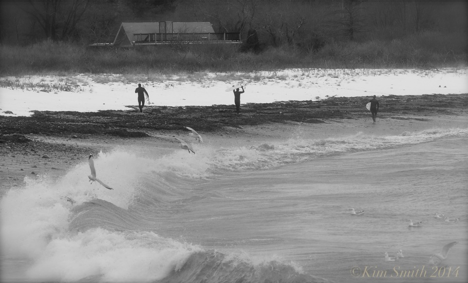 Brace Cove surfers -2 ©Kim Smith 2014