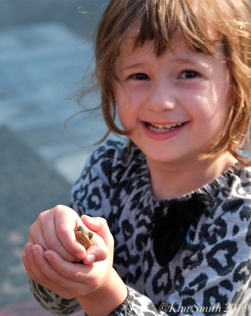Elizabeth's Toad ©Kim Smith