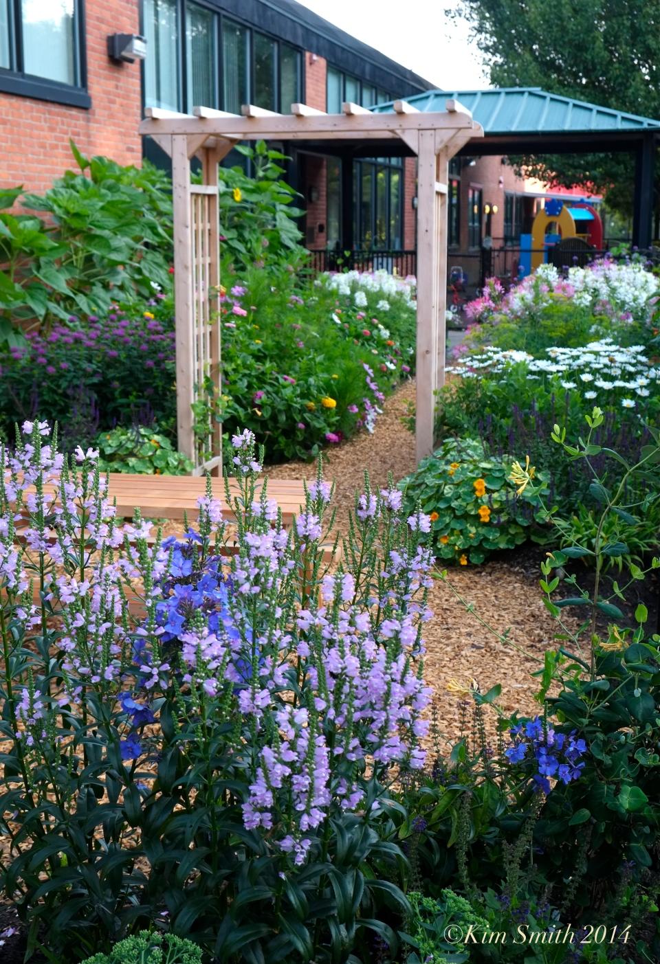 Pathways for Children Butterfly Garden ©Kim Smith 2014 copy