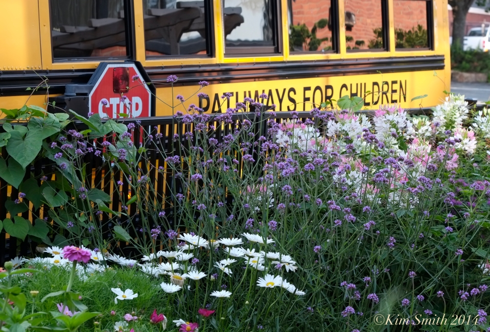 Pathways for Children Butterfly Garden school bus ©Kim Smith 2014.