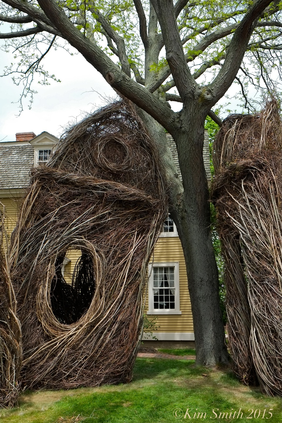 Patrick Dougherty Stickwork Peabody Essex -7 w ©Kim Smith 2015