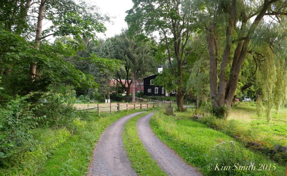 Cabot Farm Salem -1 ©Kim Smith 2015