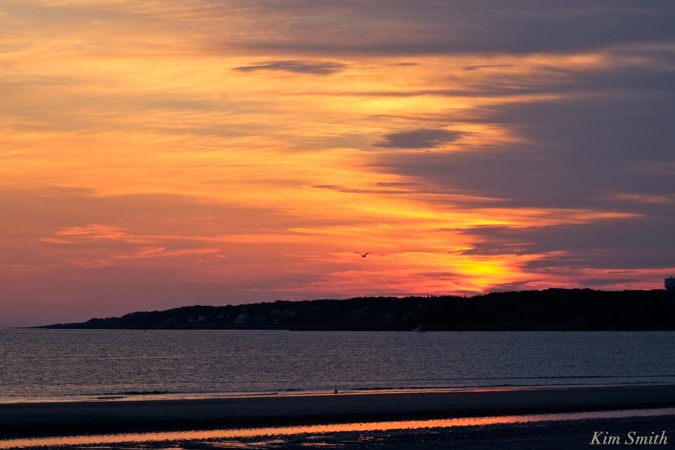 Wingaersheek Sunrise