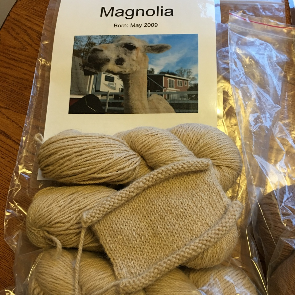 Alpaca yarn Marshalls -2 copyright Kim Smith
