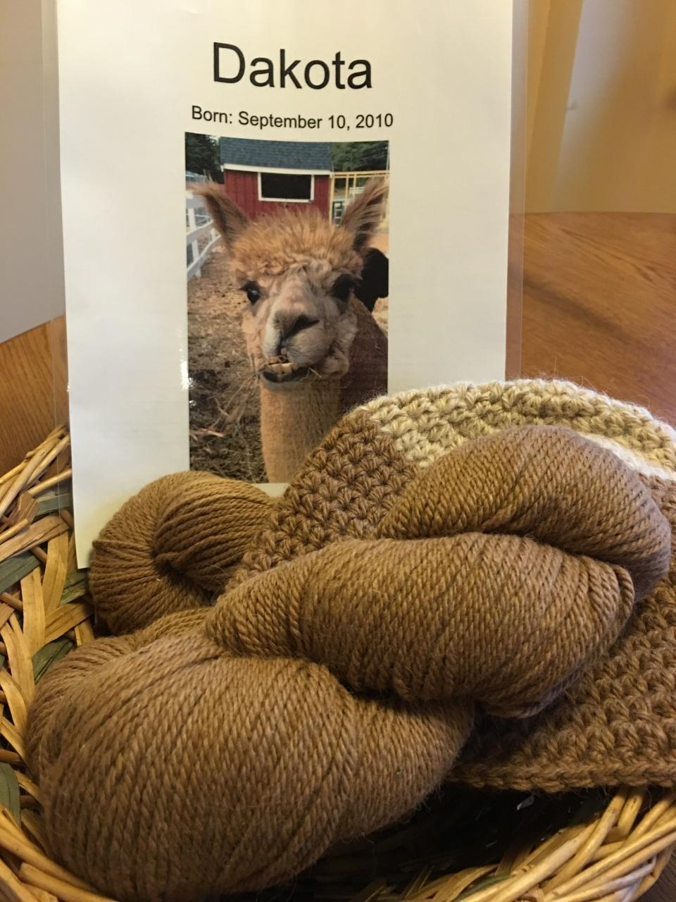 Alpaca yarn Marshalls copyright Kim Smith