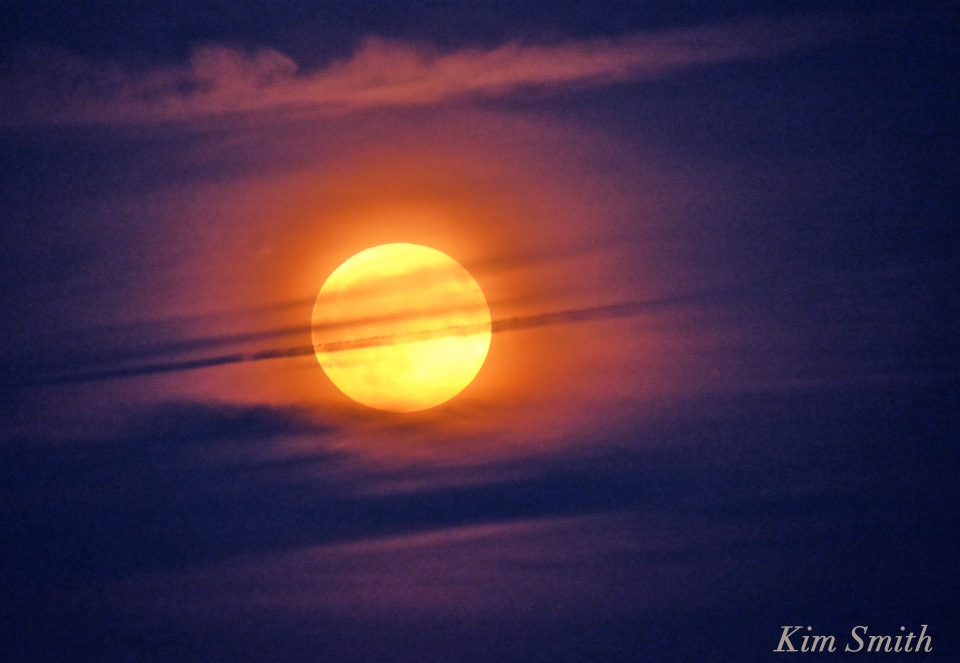 harvest-moon-2016-copyright-kim-smith