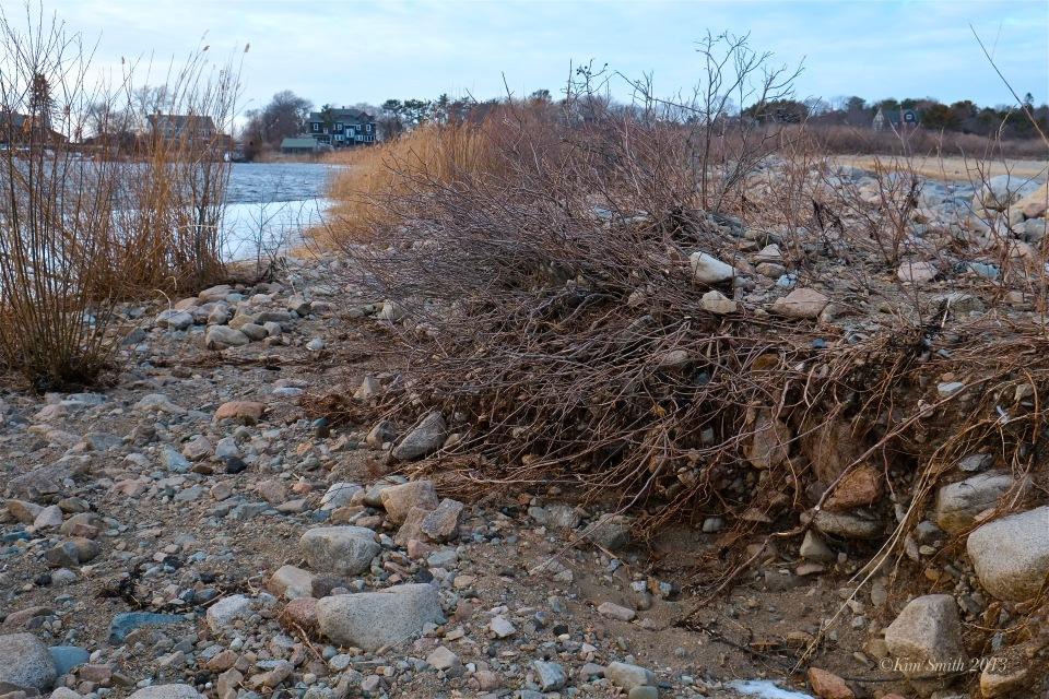 niles-pond-brace-cove-storm-damage-4-c2a9kim-smith-2013
