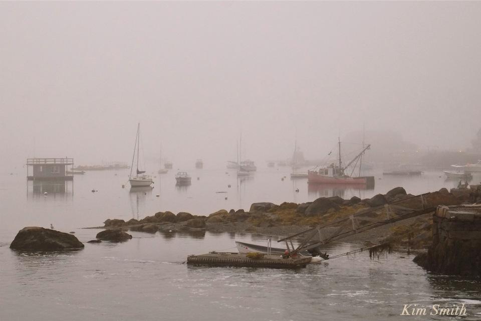 goose-cove-gloucester-foggy-evening-copyright-kim-smith
