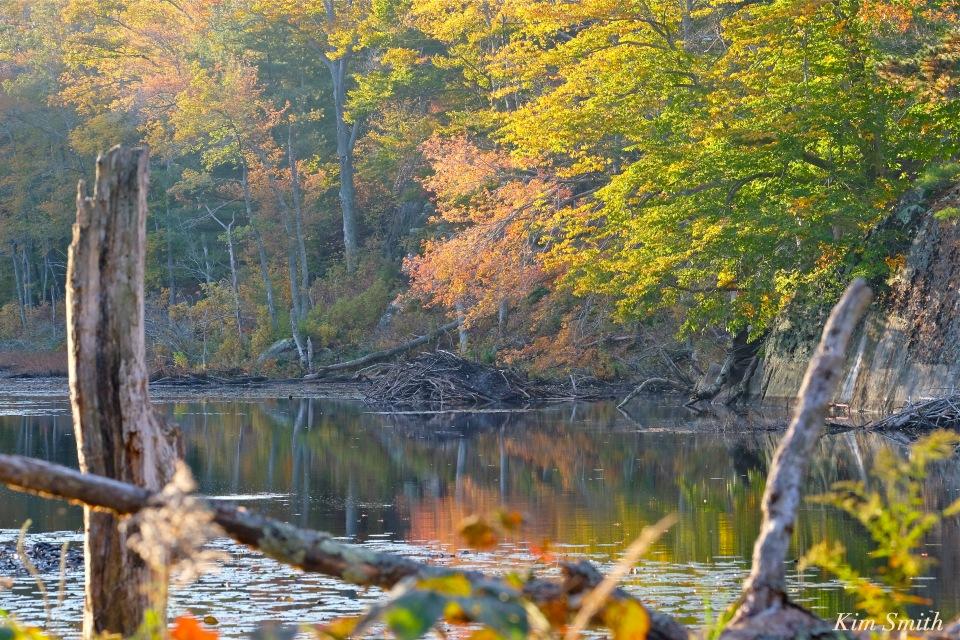 beaver-lodge-2-gloucester-massachusetts-copyright-kim-smith