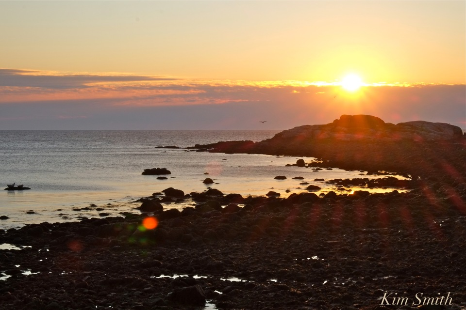 new-years-day-sunrise-eastern-point-gloucester-2017-brace-cove-3-copyright-kim-smith