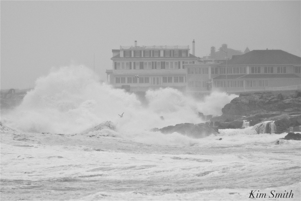noreaster-backshore-waves-7-gloucester-1-24-17-copyright-kim-smith