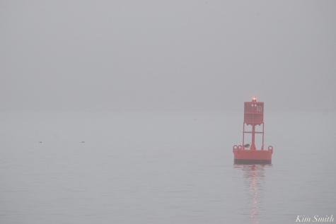 Red Ten Buoy Gloucester Massachusetts copyright Kim Smith