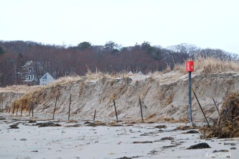 barrier-beach-erosion-gloucester-massachusetts-good-harbor-beach-5-copyright-kim-smith
