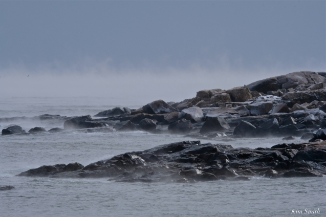 bass rocks sea smoke gloucester massachusetts winter storm 2019 copyright kim smith - 16. jpg