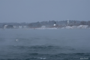 ten pound island lighthouse sea smoke gloucester massachusetts winter storm 2019 copyright kim smith - 12