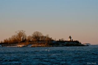 #GloucesterMA Ten Pound island Lighthouse Deep Freeze January 31, 2019 - 01