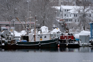 Snowy Day February Gloucester Harbor copyright Kim Smith - 09y