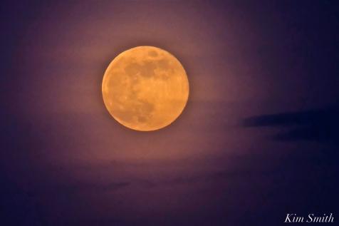 Full Flower Moon May Gloucester Massachusetts -16 copyright Kim Smith