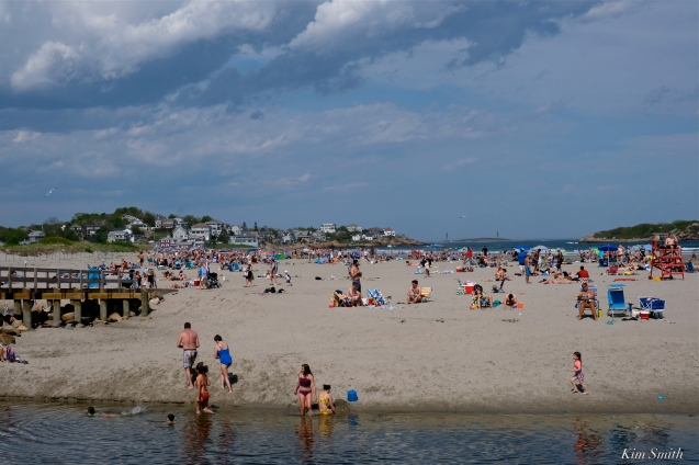 Good Harbor Beach Gloucester Massachusetts -4 copyright Kim Smith