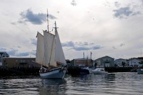Schooner Festival Gloucester Parade of Sail copyright Kim Smith - 08