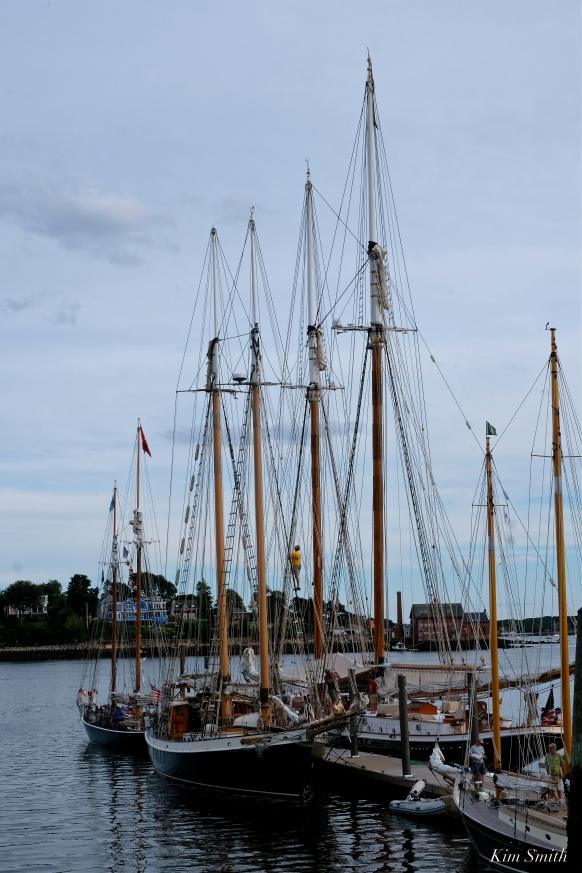 Schooner Festival Gloucester Parade of Sail copyright Kim Smith - 11