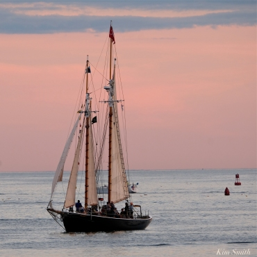 Schooner Festival Gloucester Parade of Sail copyright Kim Smith - 13 copy