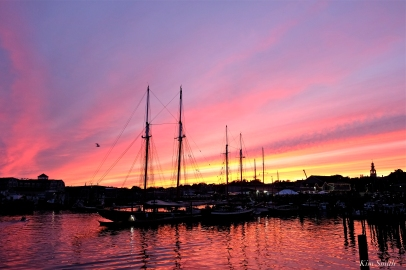 Schooner Festival Gloucester Parade of Sail copyright Kim Smith - 22 copy