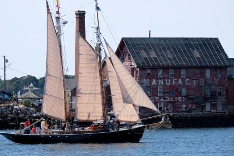 Schooner Festival Gloucester Parade of Sail copyright Kim Smith - 39