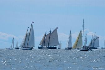 Schooner Festival Gloucester Parade of Sail copyright Kim Smith - 59 copy