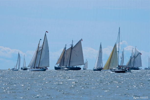 Schooner Festival Gloucester Parade of Sail copyright Kim Smith - 59