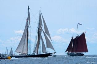 Schooner Festival Gloucester Parade of Sail copyright Kim Smith - 61 copy