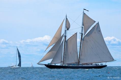 Schooner Festival Gloucester Parade of Sail copyright Kim Smith - 65 copy