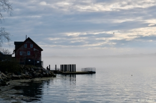 Paint Factory Rocky Neck Gloucester Fog Lifting copyright Kim Smith - 20 of 23