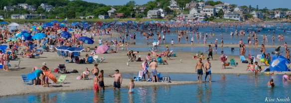 Good Harbor Beach Pandemic Gloucester MA copyright Kim Smith - 6 of 7